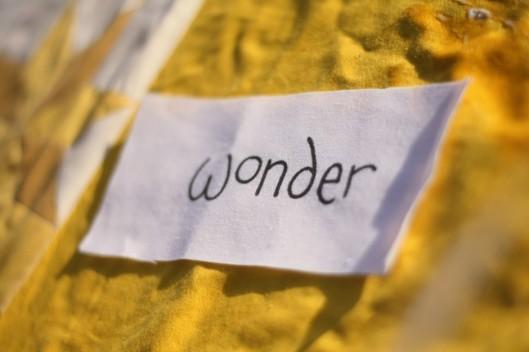 wonder-940x626