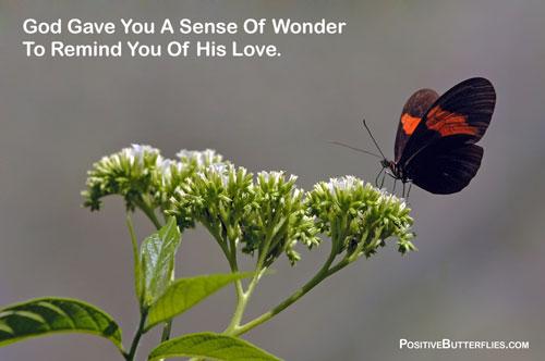 wonderRemind-of-love