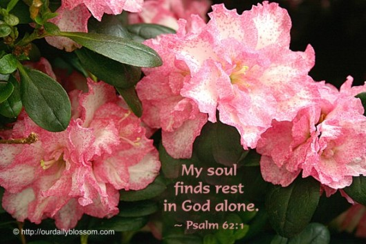 rest in god alone